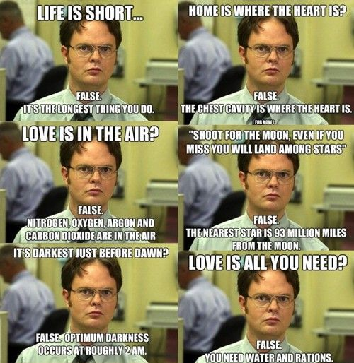 The best of the Dwight memes | Little White Lion