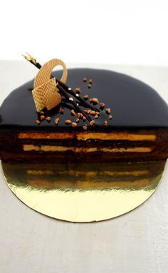 "Торт ""Терра Африка"" - Шоколатье.ру"