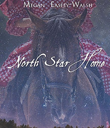 North Star Home by Megan Easley-Walsh https://www.amazon.com/dp/B077H3GXWL/ref=cm_sw_r_pi_dp_x_dEkfAbF8FA9F2