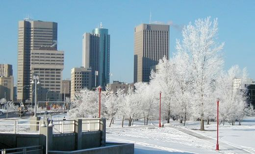 Hoar frost and downtown Winnipeg