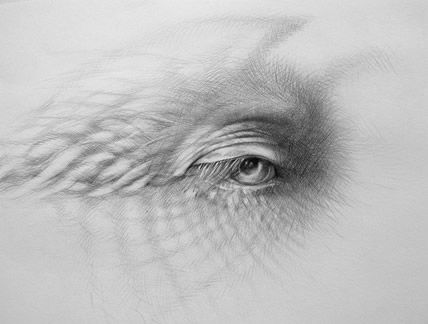 Eye of the Storm I. Judith Mason