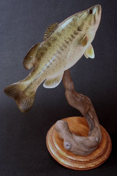 Best images about fish carving on pinterest miniature