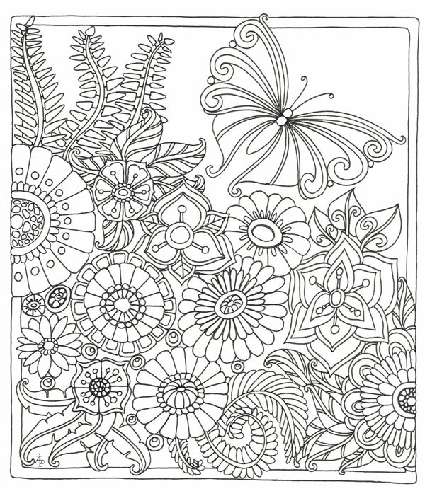 1541 Best Images About Zentangles Coloring Pages On Pinterest
