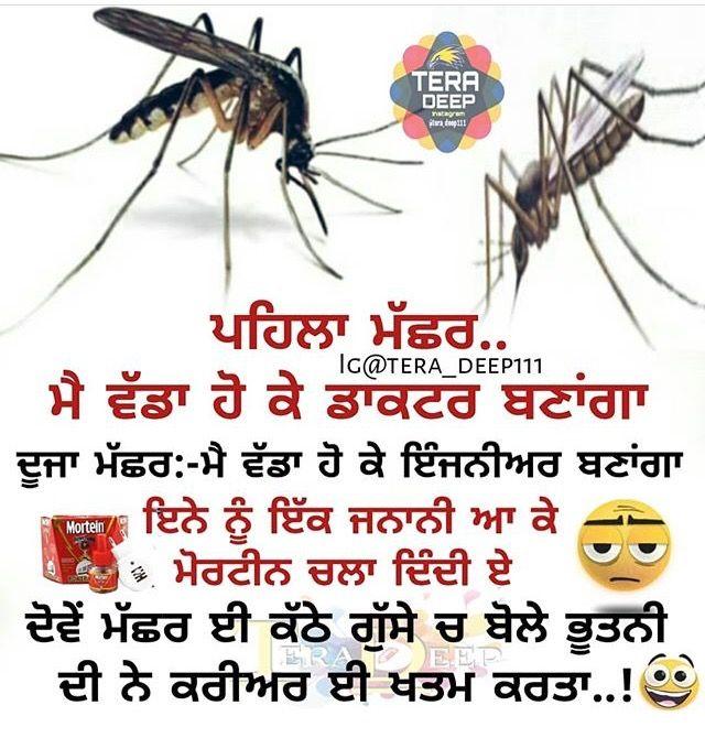Pin By Guri Malhi On ʜᴀssɪʏᴀ Á´‹Êœá´‡á´…ɪʏᴀ Funny Quotes Jokes Funny