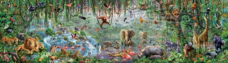"World's Largest Jigsaw Puzzle Challenge - 33,600 piece jigsaw puzzle titled Wildlife...highly detailed and colorful African wildlife work of art was created by artist Adrian Chesterman.   The assembled puzzle measures a whopping 225"" x 62"" when complete. That makes it 18.75 feet long and over 5 feet tall."