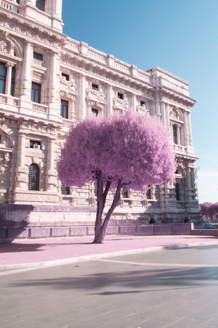 Rome en infrarouge fait paraitre la ville encore plus merveilleuse  2Tout2Rien