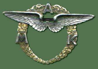 Aviation Wings and Badges of World War 2 - What Is It?