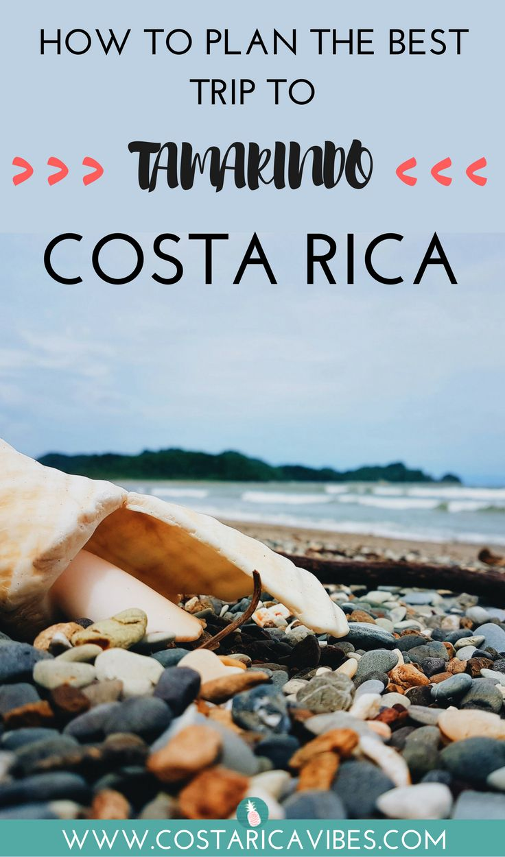 "a comprehensive guide to the history of costa rica The story of costa rica guide & toucan maps adapted from desafío magazine ""you do what"" is the predictable response when sue or i tell anyone that after years training as biochemists we ended up making maps of costa rica."