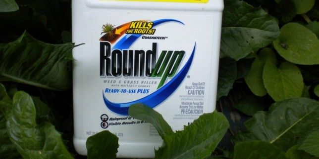 Roundup herbicide linked to celiac disease and gluten intolerance, new study suggests