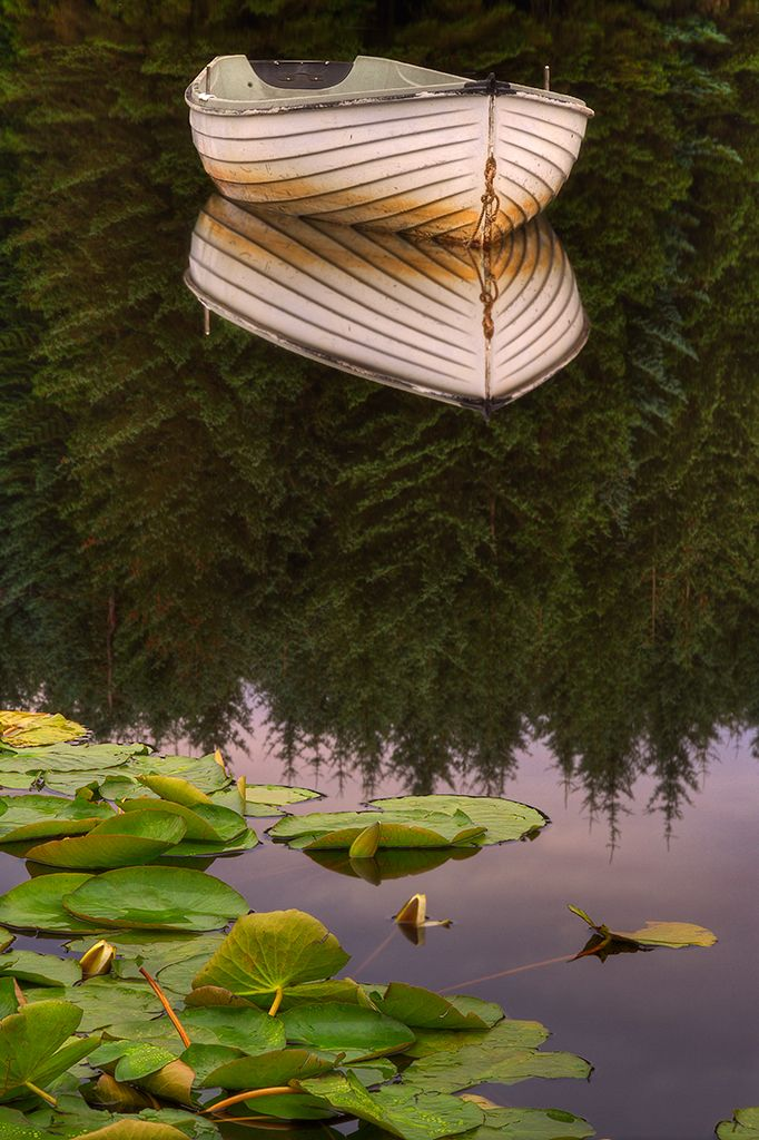 Silent Reflection. Loch Rusky, Scotland. Pic by Karl Williams. Posted by Photobotos.com