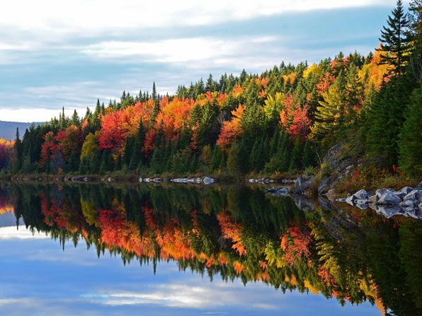28 Best Maine Fall Foliage Images On Pinterest Maine