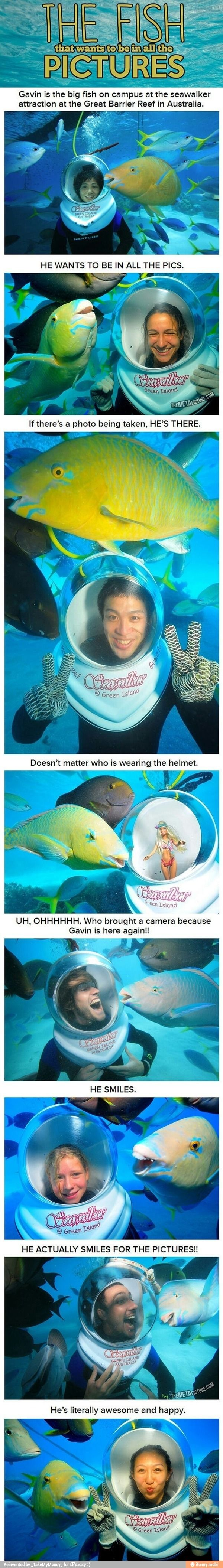 This fish knows his picture is being taken!