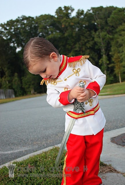 34 best easy diy costumes for boys images on pinterest halloween diy prince costume for kids solutioingenieria Images