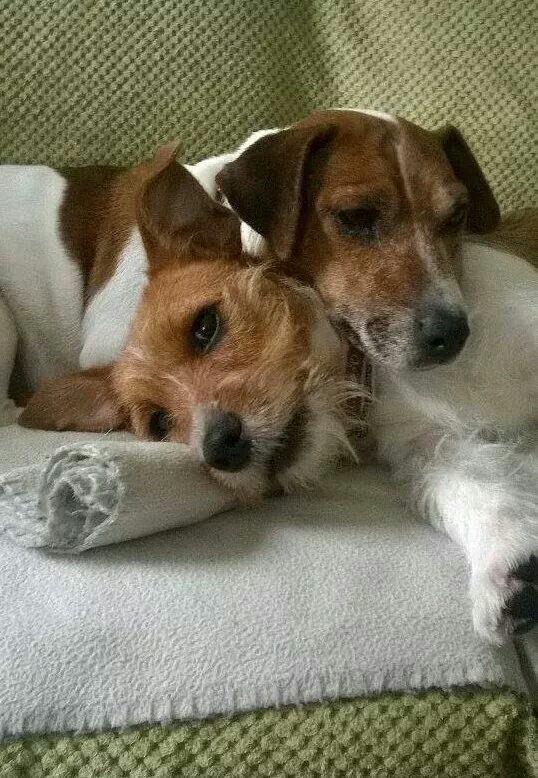 Such love for one another!