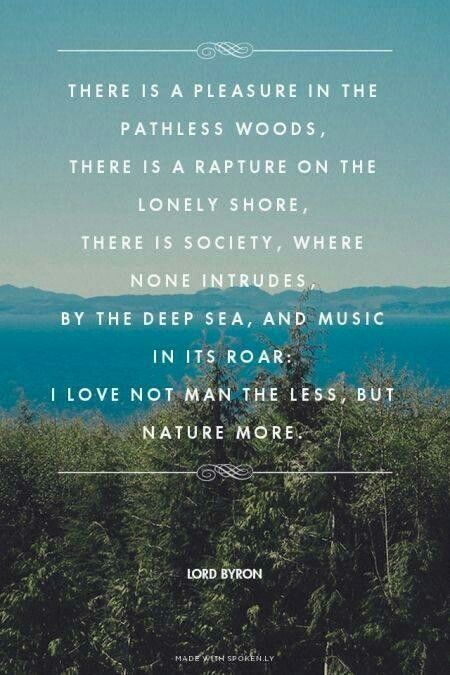 There is pleasure in pathless woods