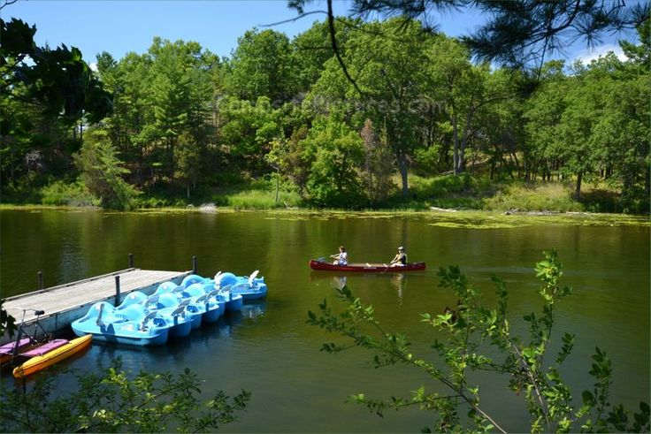 The Pinery, The Beach, Camping in Ontario Parks