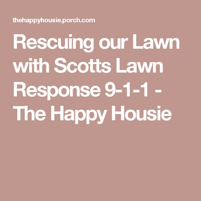 Rescuing our Lawn with Scotts Lawn Response 9-1-1 - The Happy Housie