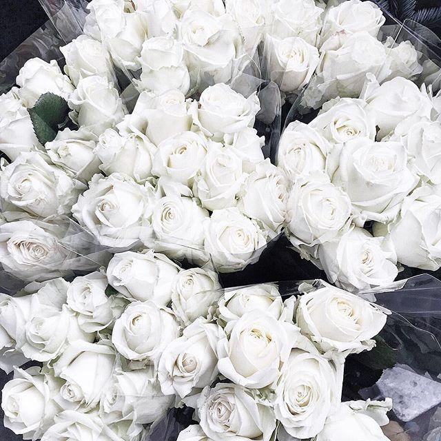 Loving White for 2016