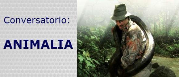 Consulado General de Colombia en París invita a la comunidad colombiana a participar en un conversatorio con el especialista colombiano en conservación de especies, Franz Kaston Florez, que se realizará el jueves 26 de septiembre de 2013, a las 18:30 h, en la sede Consular (12 Rue de Berri, París 75008)