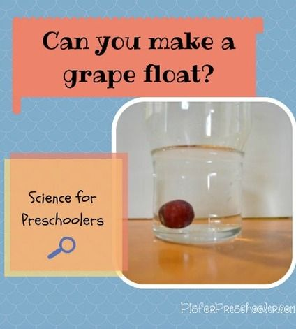 Can you make a grape float? Science experiment for preschoolers! | P is for Preschooler