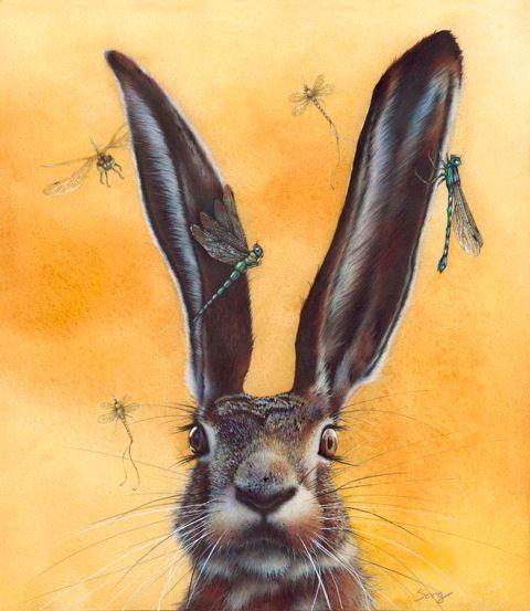 220 best SWEET LONGEARS images on Pinterest  Bunny art Bunny