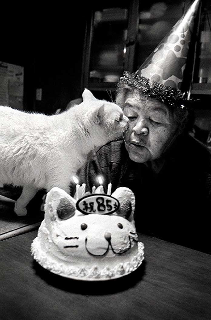 Bien qu'une majorité de personnes clament haut et fort que le chien est le meilleur ami de l'homme, beaucoup voudraient que les chats les détrônent. Ils ont certes la réputation d'être plus caractériels que leurs amis aboyeurs, voire même parfois ingrats, ou encore ayant quelques ambitions de domination du monde... Au pays du Soleil levant, la photographe japonaise Miyoko Ihara s'est laissée séduire par l'amitié presque fusionnelle d'une grand-mère et de son chat, nous...