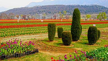 Delightful #Jammu and #Kashmir #TourPackages just 50%off.