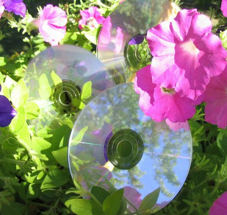 "Top 10 ways to recycle (re-use) CDs. The hovercraft idea (sports bottle top, CD, balloon) would be fun. The window treatment idea could be expanded to make a glittery privacy screen or false ""wall""."