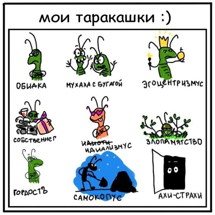 Расскажи о своих таракашках :)