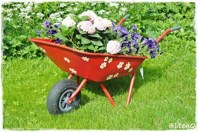 Den rustne trillebåra nedi hagen har fått en overhaling. Fra kjedelig grå til knallrød og blomstrete. Vi plukket av hjulet og holkene og pusset vekk all rust. Skrapte vekk alle merker, med det verktøyet vi hadde. Vi grunnet først med et strøk svart, så et strøk rød. Ghiant akrylspray, type knallrød. Blomstene er malt med …