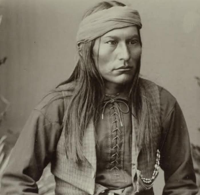 The 10 most wanted Hollywood cheekbones in Harley Street  Native American Indian Cheekbones