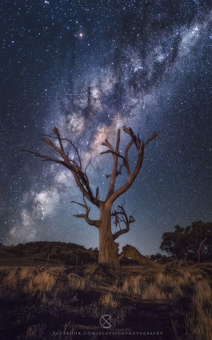 Fallen Star by Scott McCook on 500px