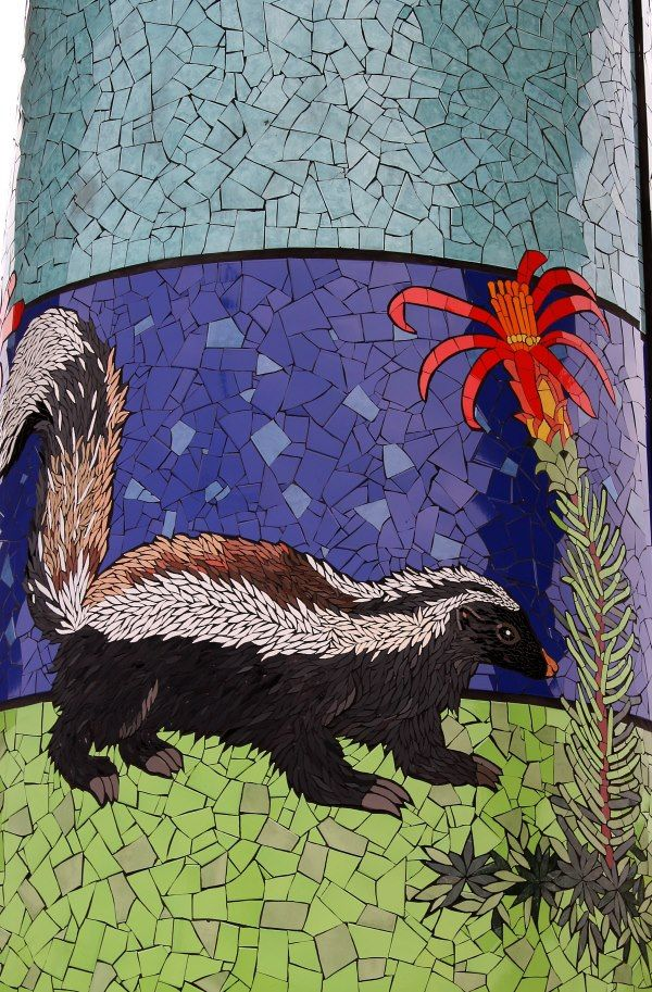Skunk - Natural History Museum in Mosaic - Chile: Isidora Paz López