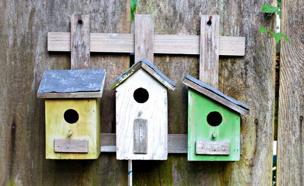 Add personality with brightly coloured bird boxes