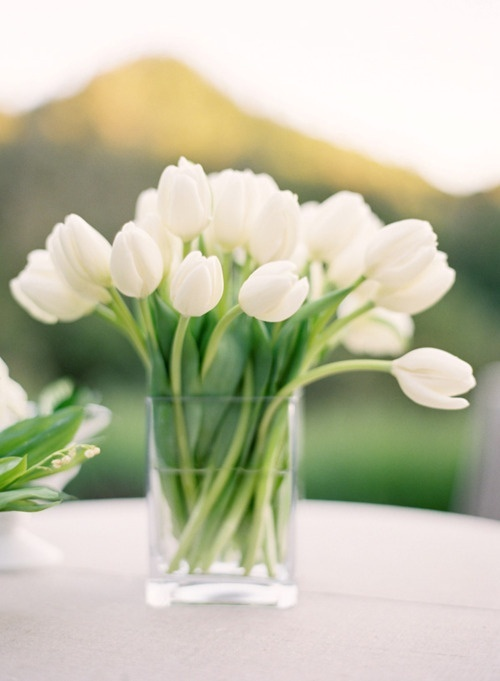 a table centrepiece of white tulips anyone can do, which is simple but effective.  If you need vases Norah does have them.