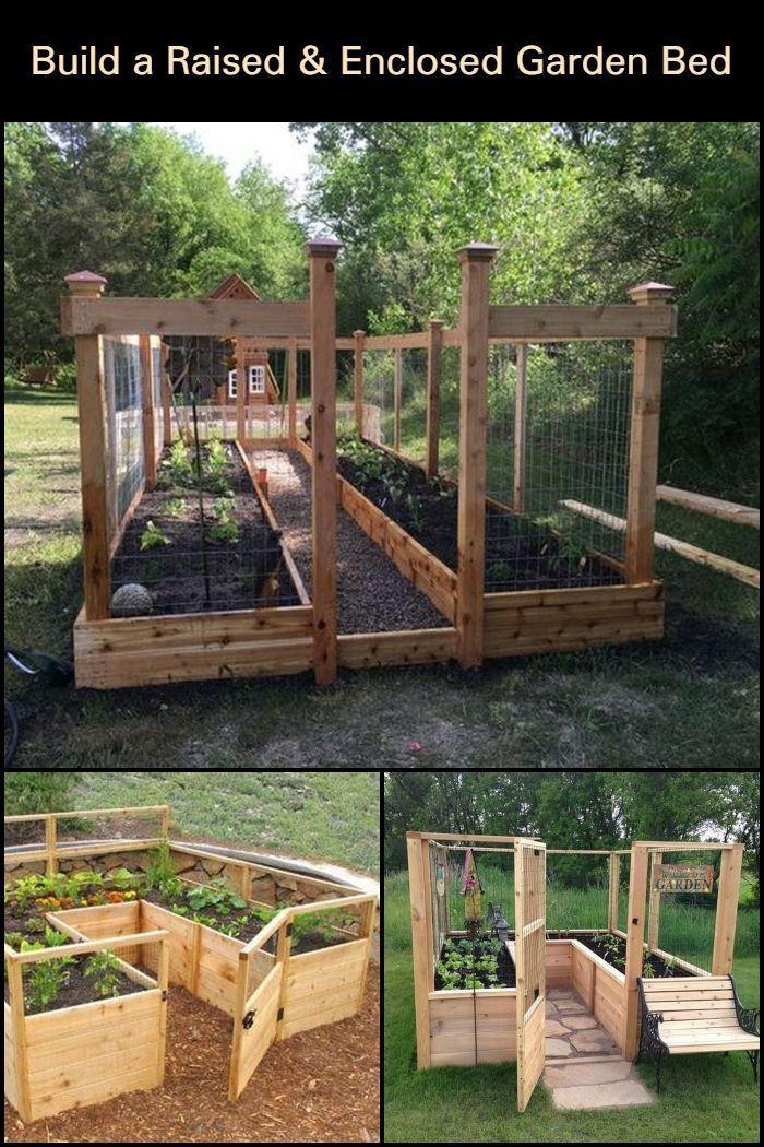Gardens Discover Diy Raised And Enclosed Garden Bed In 2020 Garten Grundriss Gartenbeet Garten