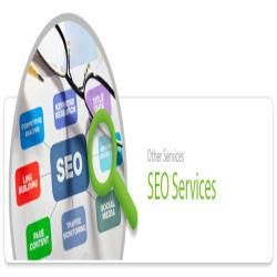 At SSCSWORLD, quality of web design services stands as a prominent parameter of our growth.