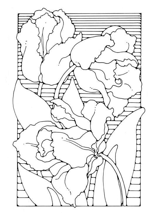 Coloring page tulips - coloring picture tulips. Free coloring sheets to print and download. Images for schools and education - teaching materials. Img 27777.