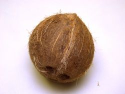 Coconut and tea tree Oil for Sunburn