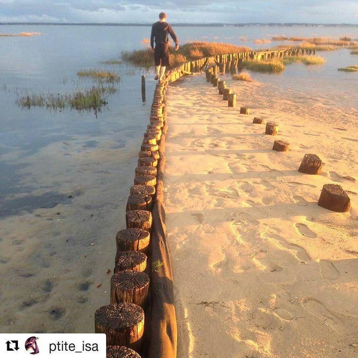 """[Coup de ] Photographie de @ptite_isa """"Arrivée sur notre lieu de villégiature Lanton dans la baie d'Arcachon et comme tu vois déjà de bO paysage qui te donne envie de te poser  ben oui apéro sur la plage  pas besoin de filtre quand la photo est juste magique à elle toute seule :))"""" #vraiesvacances #bassindarcachon #espritbassin #picoftheday #pictureoftheday #photooftheday #instagram #gironde #instagood #see #sun #summer #coeurdubassin #arcachon #capferret #andernos #dunedupilat #Landscape…"""