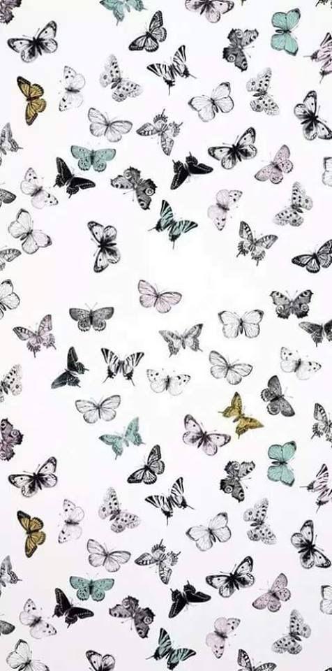 Pillangók!