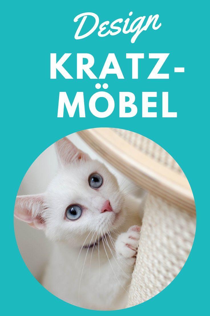 design kratzbaum: top designer kratzbäume in 2020 | design