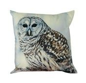 Owl Velvet Look Cushion  Website Coming soon...