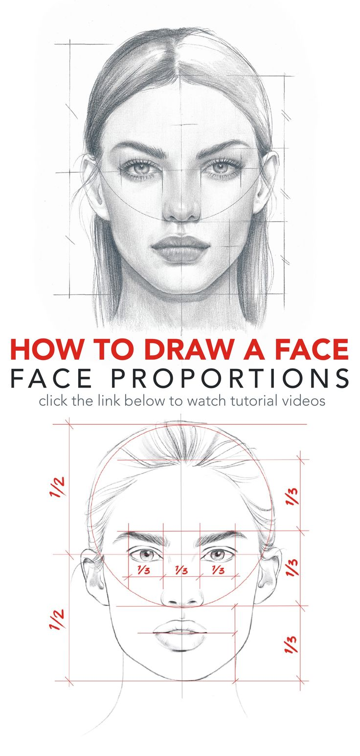 How to draw a face. Face proportions by NadiaCoolrista