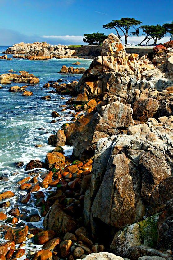 Залив Монтерей, Калифорния  Monterey Bay, California