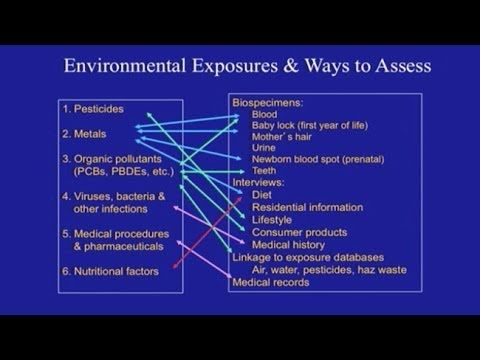 ▶ What Causes Autism?: The Role of Environmental Exposures - YouTube