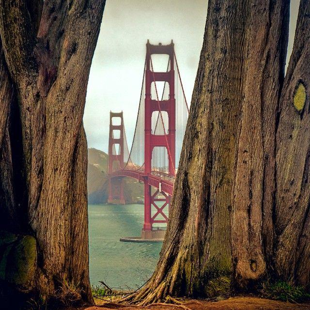 Golden Gate Park, San Fran