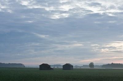 Lakeus - viljapellon tuoksu ja hiljaisuus