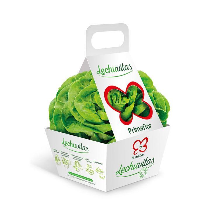 "Primaflor ""LECHUVITAS""  (Lettuce) by Delamata Design. Source: delamatadesign.com #packaging #design #structural"