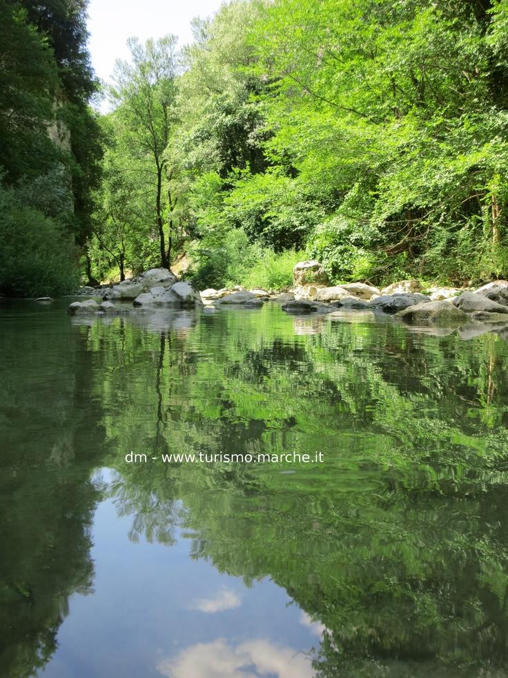 Sentino River - Natural Park of Gola della Rossa and Frasassi - Marche, Italy